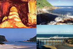 Cape Town Tours Garden  Route